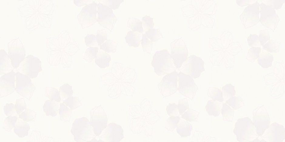 акрил фиалка белая